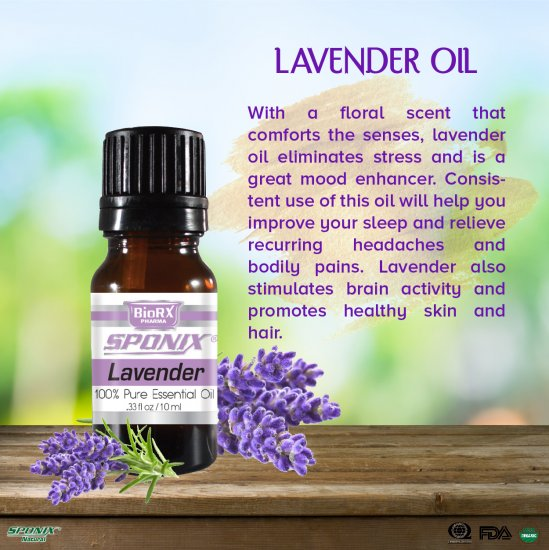 French Lavender Essential Oil - 10 mL - Click Image to Close